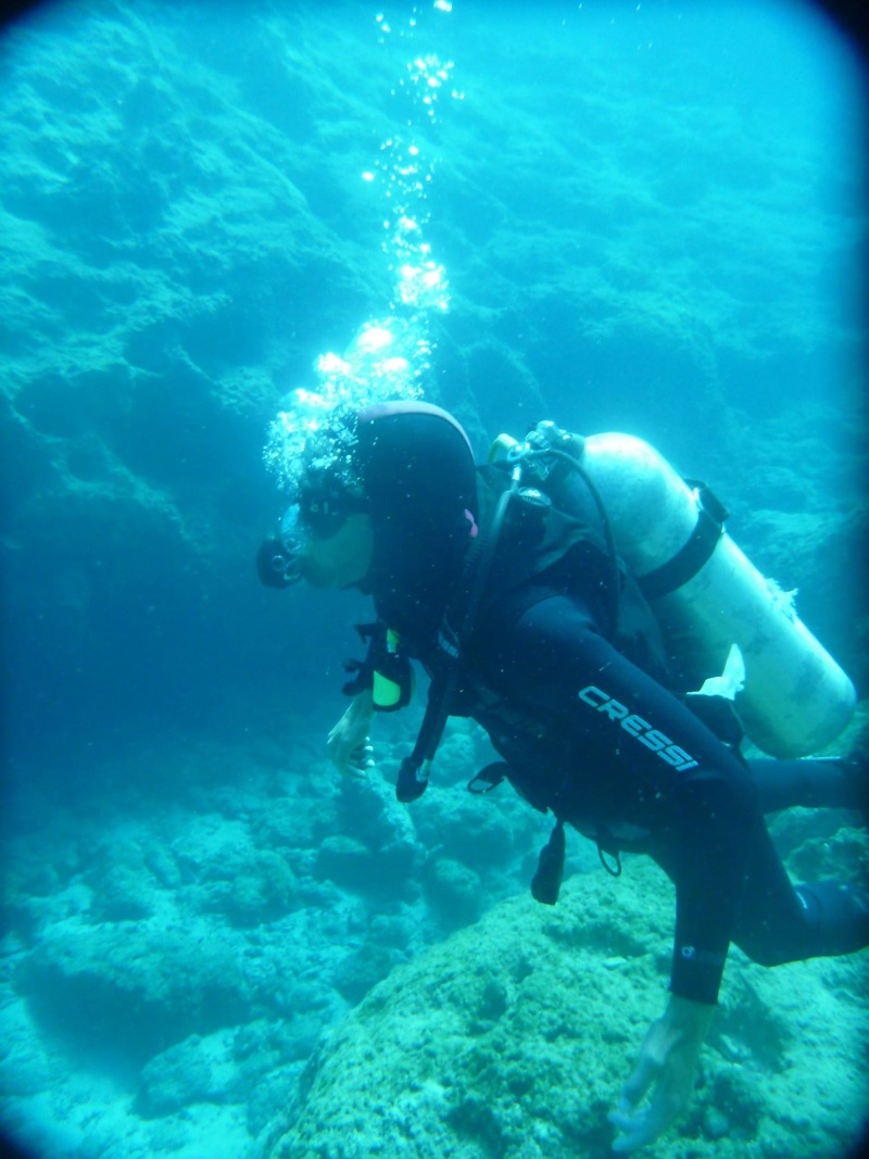Two Dives (One Day)
